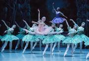 תיאטרון הבלט הלאומי של רוסיה בניהולו של ויאצ'סלב גורדייב - היפהפייה הנרדמת כרטיסים